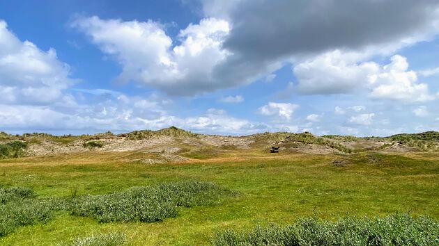 Natuur_Vlieland