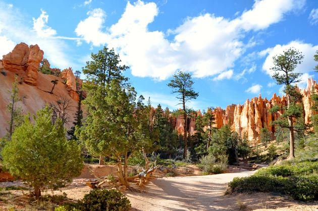 navajo-loop-bryce-canyon