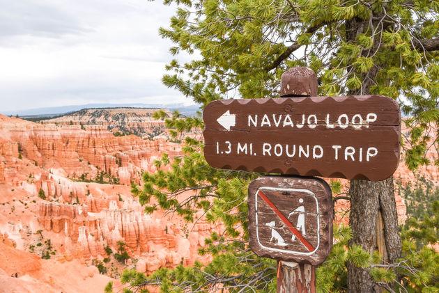 navajo-loop-bryce