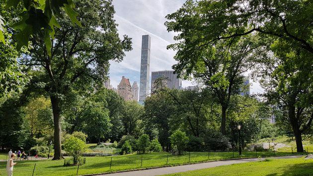 New_York_Central_Park