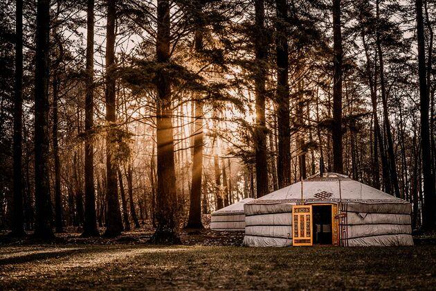 nordic-woods-yurt