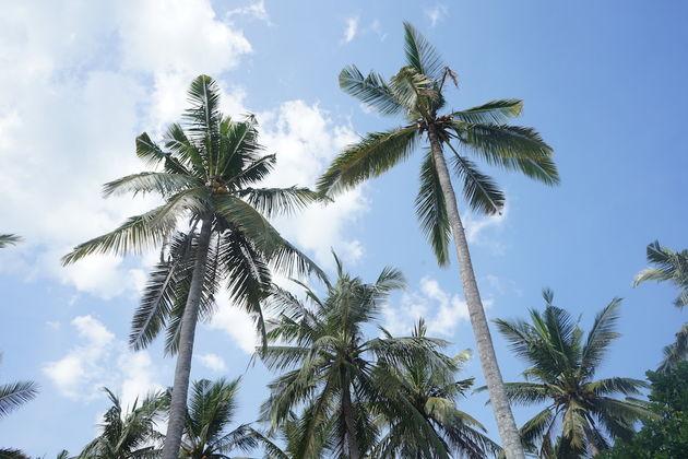 Nusa_Penida_Crystal_Beach