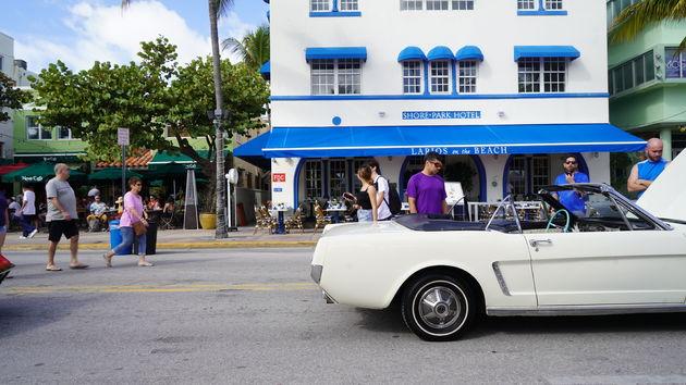 Ocean_Boulevard_Miami_15