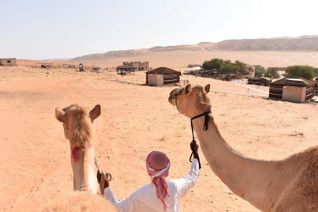oman-woestijn