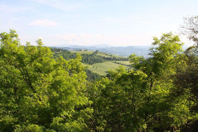 omgeving-basiliek-san-luca