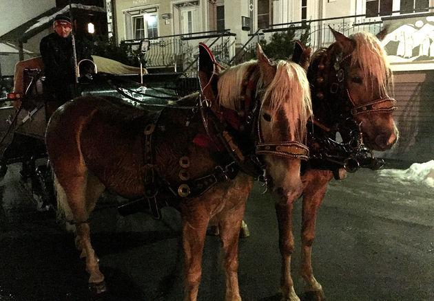 Op pad met paardjes