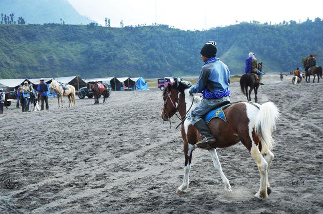 paardrijden-java