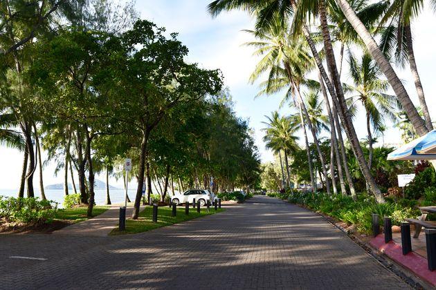 palm-cove-australië