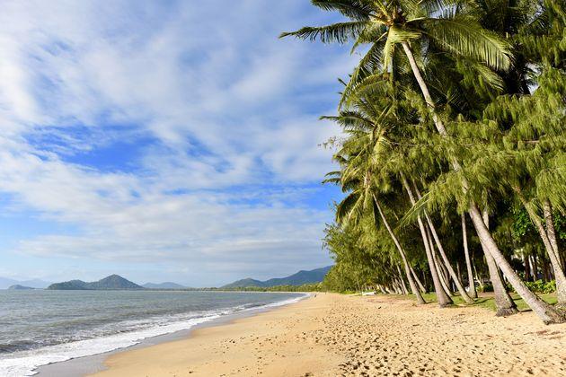 Palm-Cove-strand