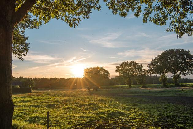 petit-013-zonsondergang