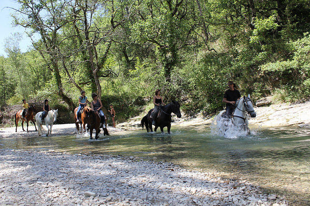 Paardrijden_camping_les_trois_rivieres