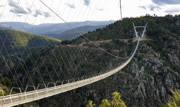 ponte_516_arouca_natuur
