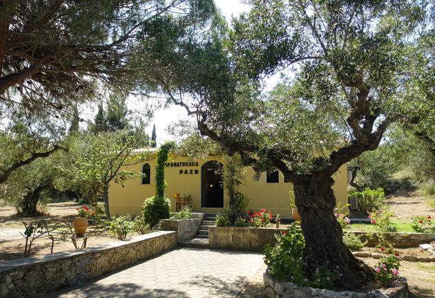 Razo-Aroma-Mediterraneo
