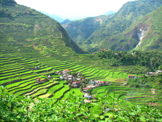 rijstterrassen-Banaue