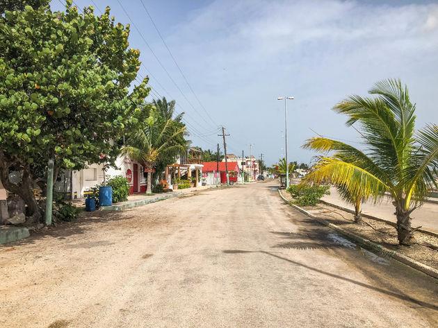 Rio-Lagartos