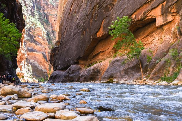 rivier-narrows-zion