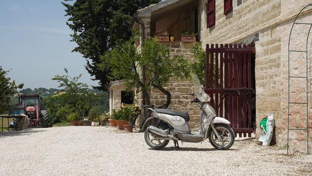 Riviera_Del_Conero_Agricultuur