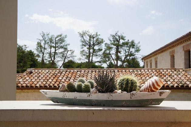 Riviera_del_Conero_planten