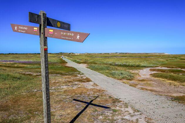 roadtrip-wadden-wandelen-texel
