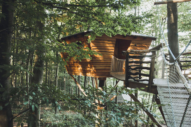 robins-nest-boomhut-6