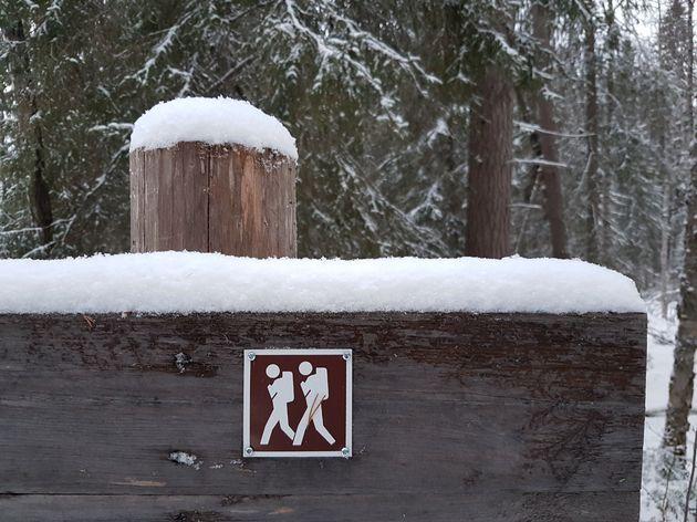 Rovaniemi_Finland_Santa_Claus_8