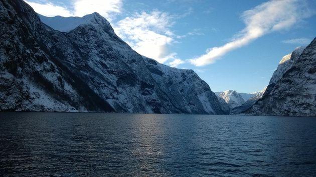 safari-fjorden-noorwegen