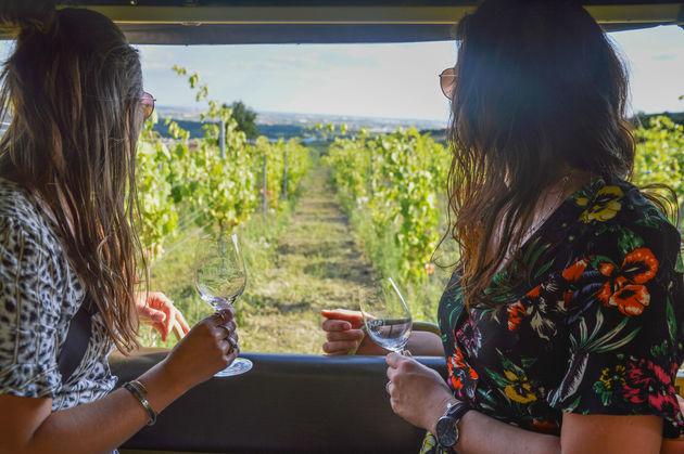 safari-wijn-bratislava