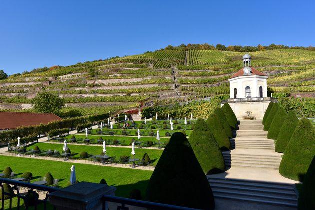 Schloss-Wackerbarth-wijn-3