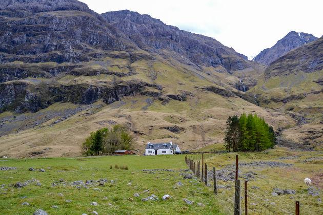 Schotse hooglanden 2.0