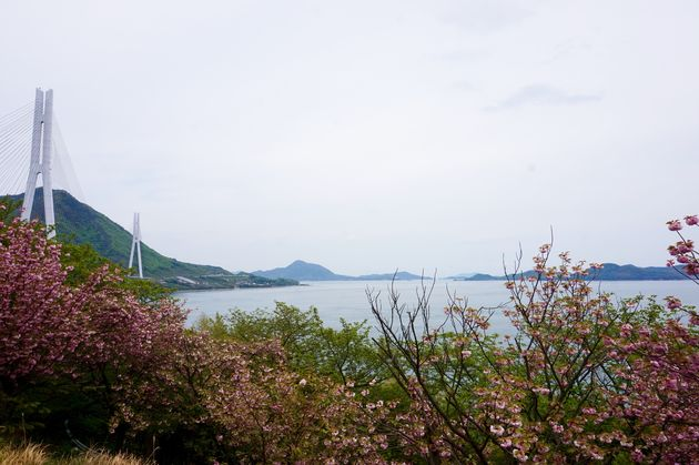 Shimanami-Kaido-cycling-path-3