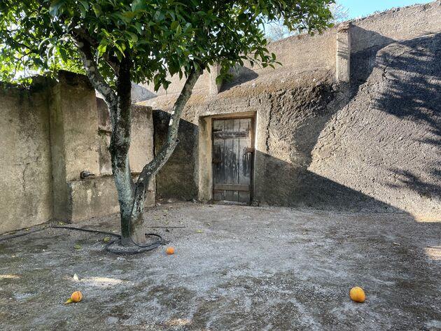 sinaasappels portugal