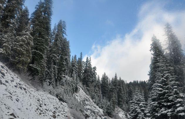 sneeuw-oregon