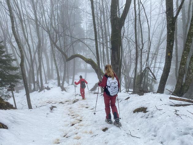 sneeuwschoenwandelen-alpe-d-huez