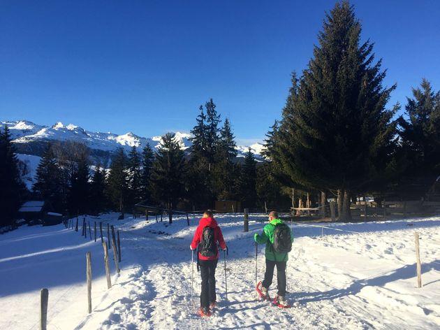 sneeuwschoenwandelen_natuur