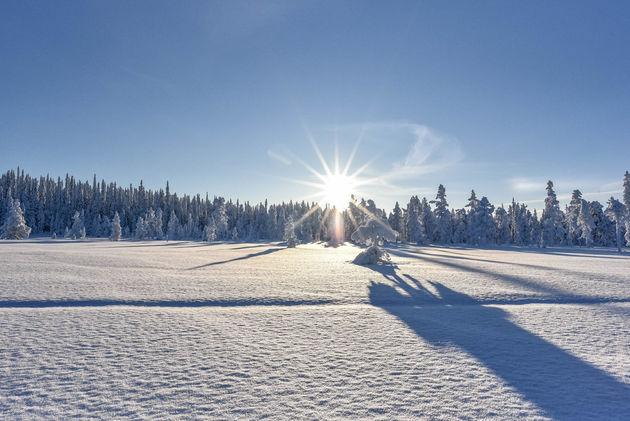 sneeuwscooter-lapland-uitzicht