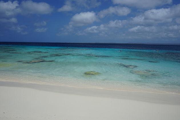Snorkelen_Bonaire