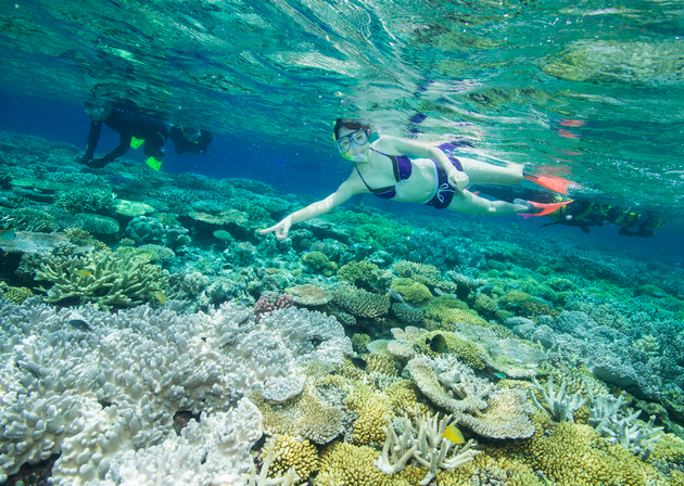 snorkelen-great-barrief-reef