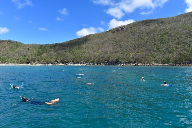 snorkelen-great-barrier-reef