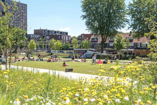 spoorpark-tilburg-zomer