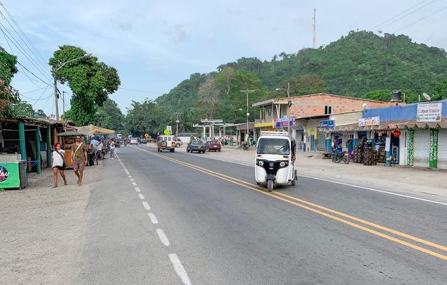Straat-Palomino