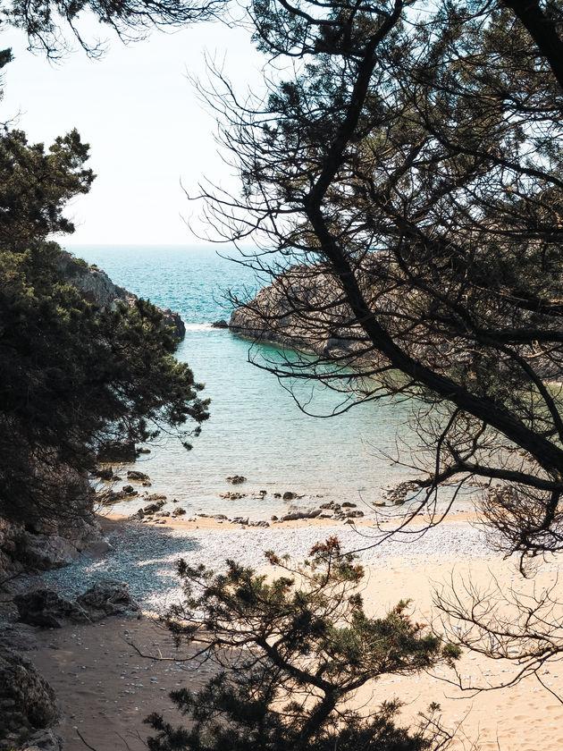 strand Paralia Glossa
