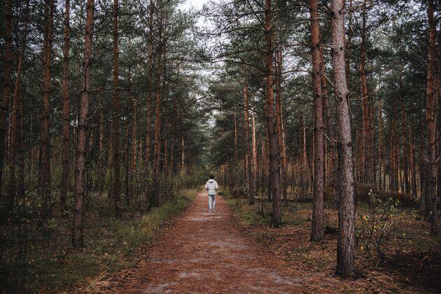 strijbeek-smokkelaarsroute