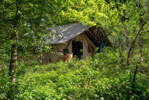 tent-camping-de-roos