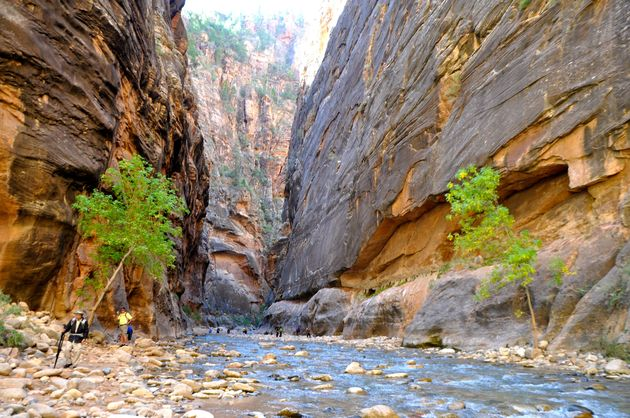 the_narrows_zion