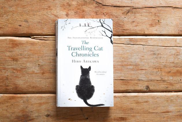 travelling-cat-boeken-zomer