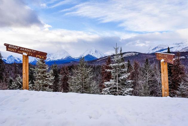 uitkijkpunt-icefields-parkway