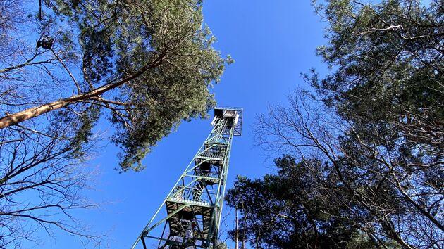 Uitkijktoren_Kalmthoutse_Heide