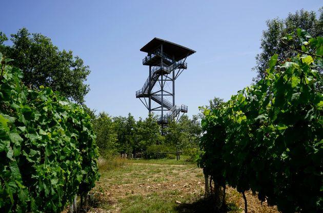 Uitkijktoren_Moncaloe_La_Terrasse
