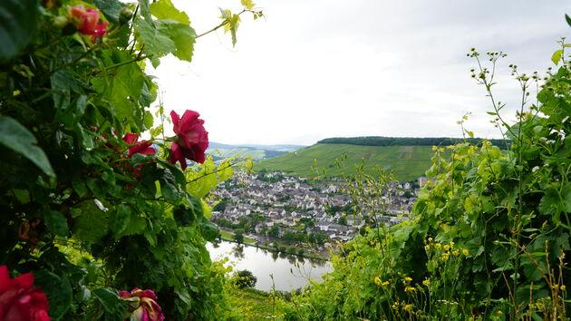 Uitzicht_Burchtruinë_Landshut.