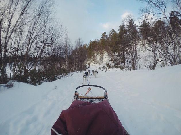 uitzicht-husky-tour-noorwegen